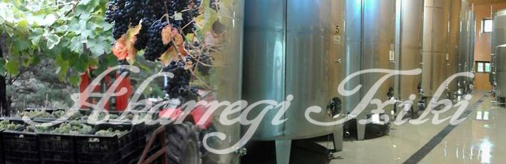Finalizada la vendimia, ya ha comenzado el proceso de fermentación